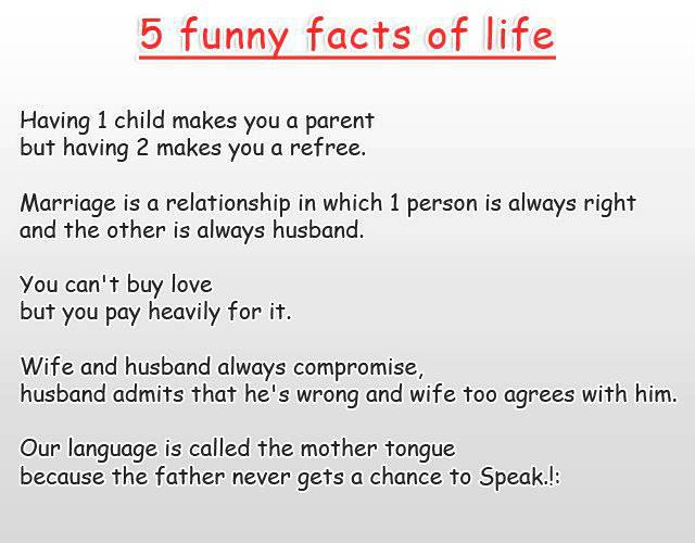 5_funny_facts_of_life