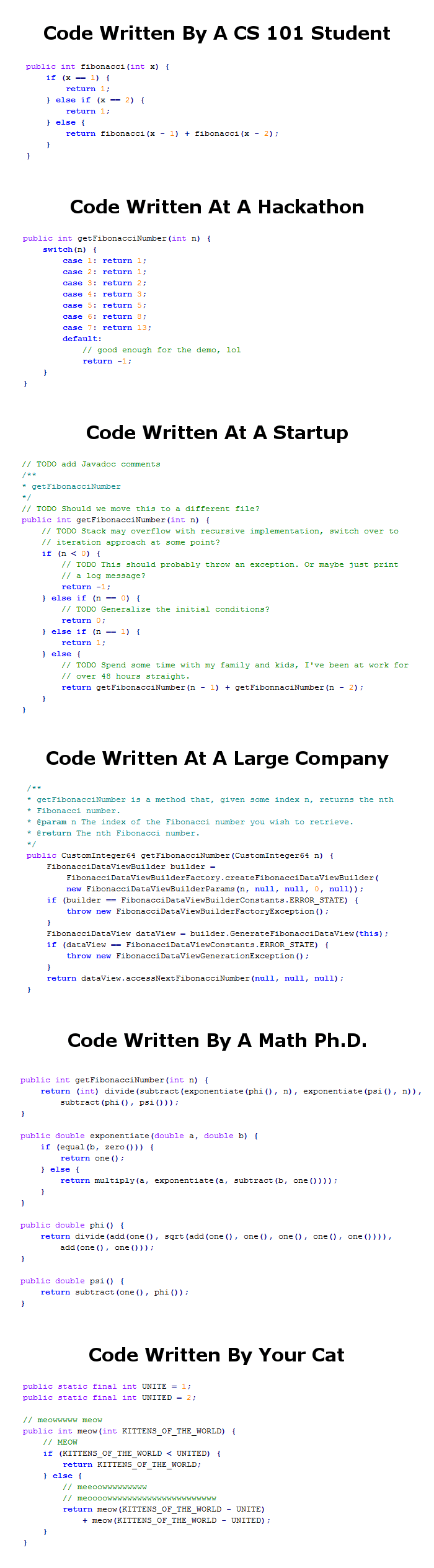code_written_by_a_cs_101_student_vs_hackathon_a_startup_large_company_math_phd_your_cat