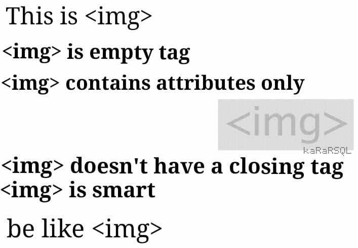 doesnt_have_a_closing_tag_is_smart