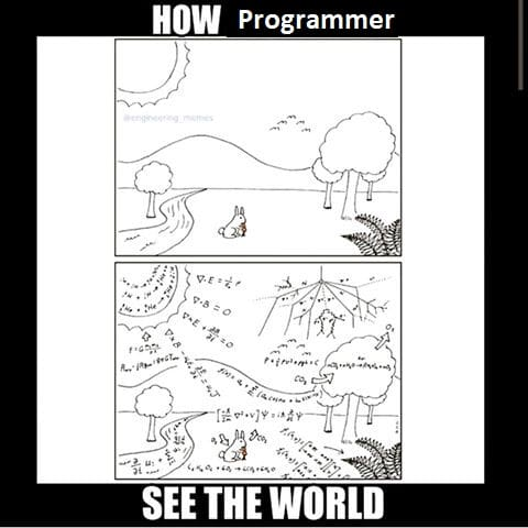 how_a_programmer_see_the_world