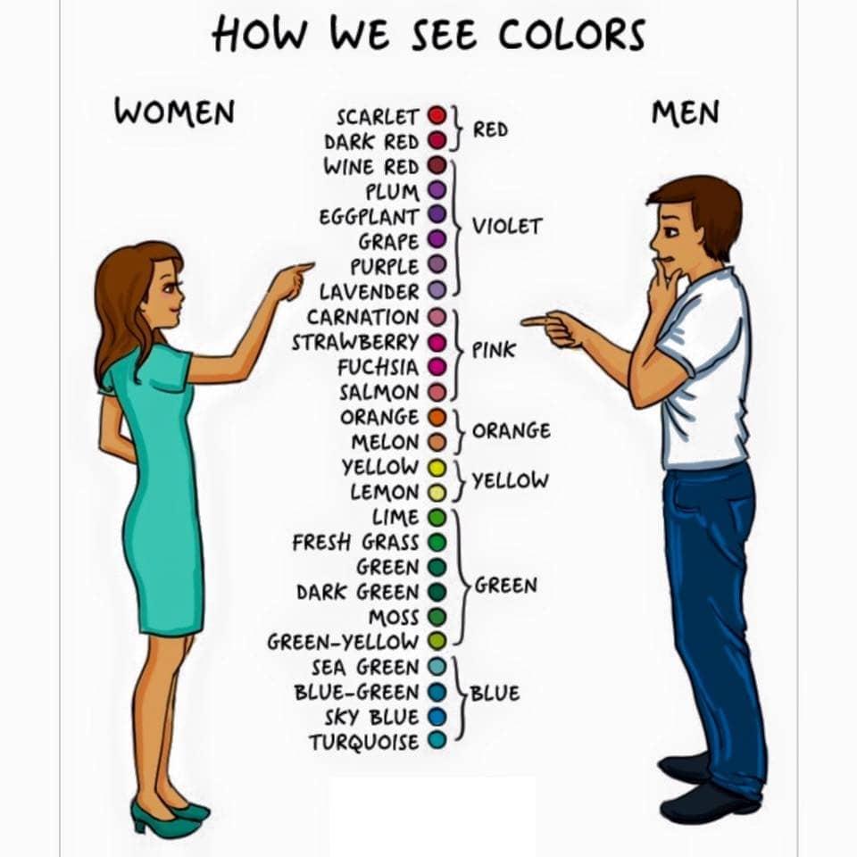 how_we_see_colors_women_vs_men