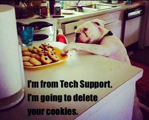 i_am_from_tech_support