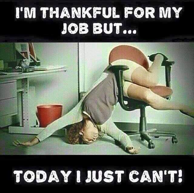 I am Thankful for my Job  Biblipole