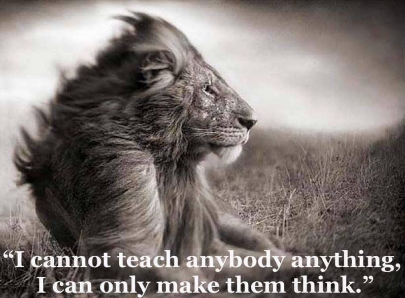 i_cannot_teach_anybody