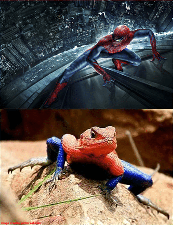 spiderman_and_the_lizards_lovechild
