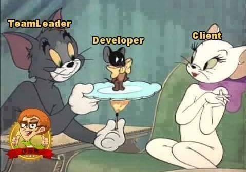 teamleader_vs_developer