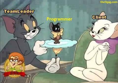 teamleader_vs_programmer