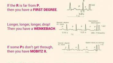 Biblipole Page 99 Of 170 Geek Humors