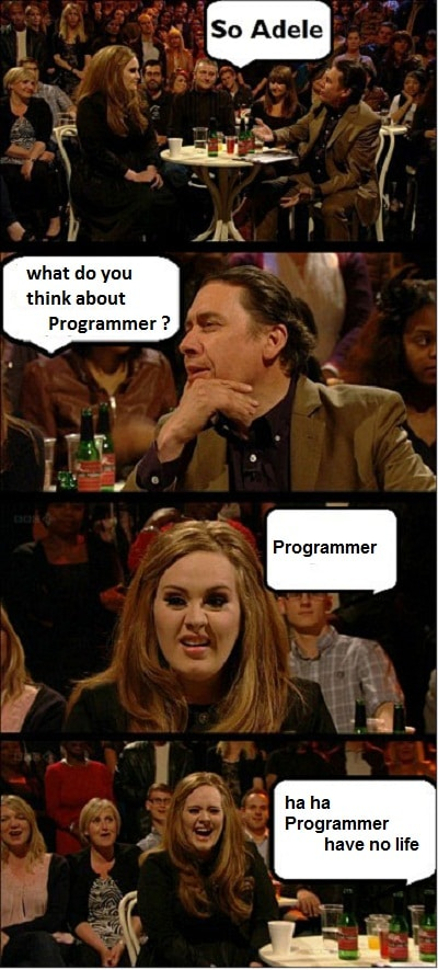 what_do_you_think_about_programmer