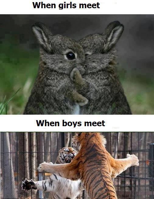 when_girls_meet_vs_when_boys_meet